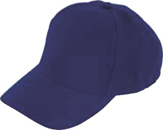 Picture of CAPS 6 PANEL *ROYAL BLUE