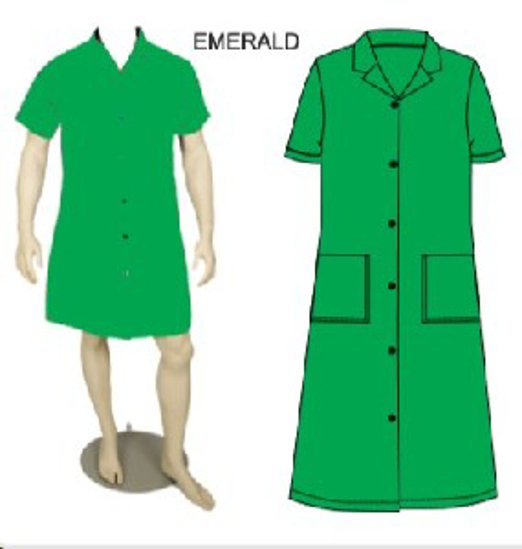 Picture of CANTEEN LADIES EMERALD 65/35